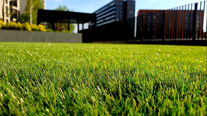 Grassy lawn in a downtown setting
